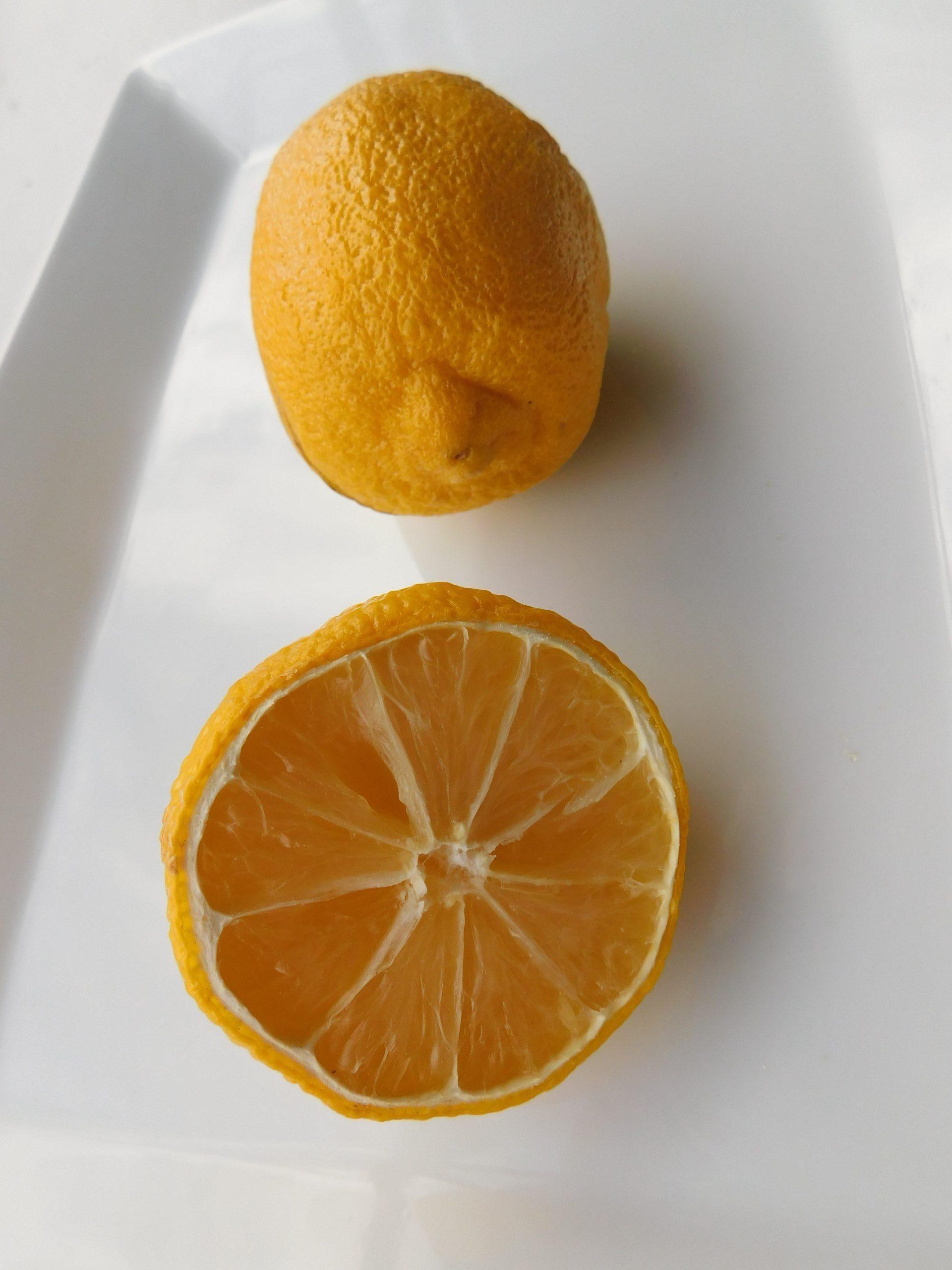 How Does Lemon Taste