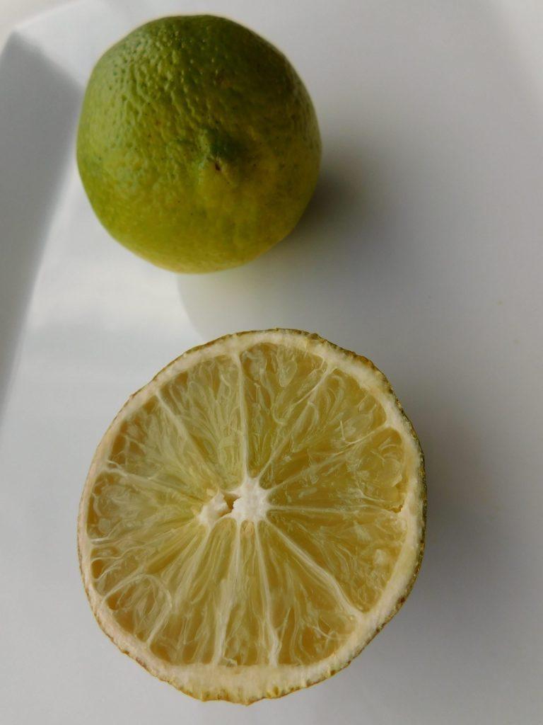 Lime Dessert Ideas